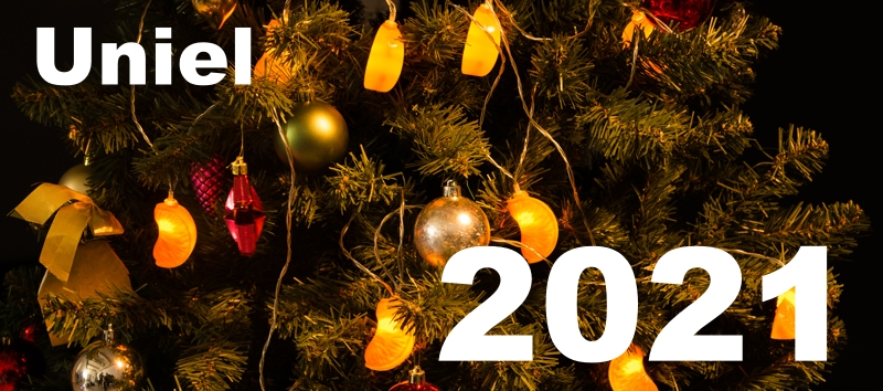 График работы магазина в  Новогодние каникулы
