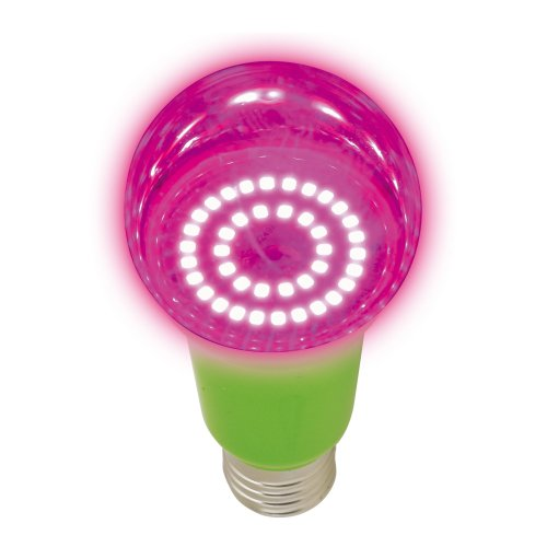 LED-A60-15W-SPSB-E27-CL PLP30GR Лампа светодиодная для растений. Форма A. прозрачная. Спектр для рассады и цветения. Картон. ТМ Uniel