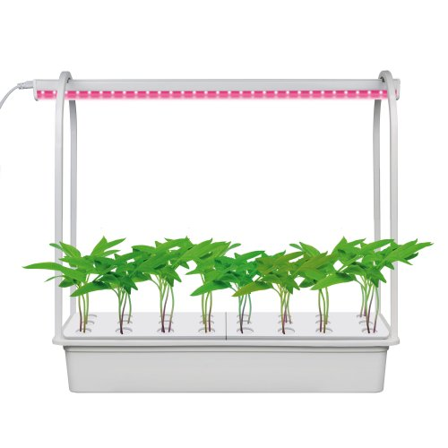 ULT-P44B-10W-SPSB IP40 AQUA SIMPLE WHITE Набор для гидропоники Минисад AQUA SIMPLE. светильник для растений светодиодный с подставкой. Спектр для рассады и цветения. Белый. TM Uniel.