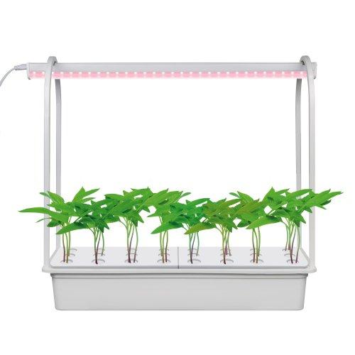 ULT-P44D-10W-SPLE IP20 AQUA SIMPLE WHITE Набор для гидропоники Минисад AQUA SIMPLE. светильник для растений светодиодный с подставкой. Спектр для фотосинтеза. Белый. TM Uniel.